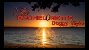 bachelorette doggy style
